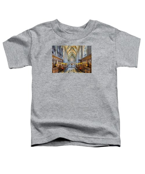 Cathedral Aisle Toddler T-Shirt