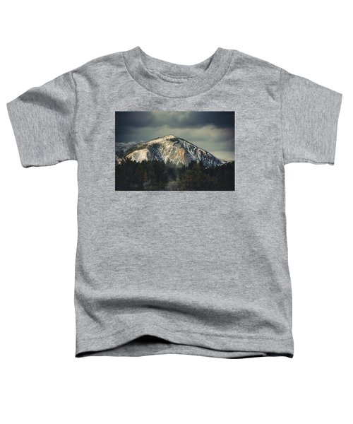 Cathedral Rock Toddler T-Shirt