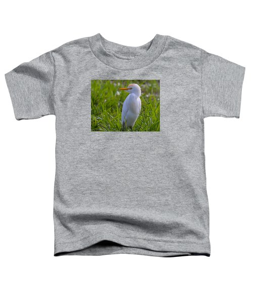 Cattle Egret Toddler T-Shirt