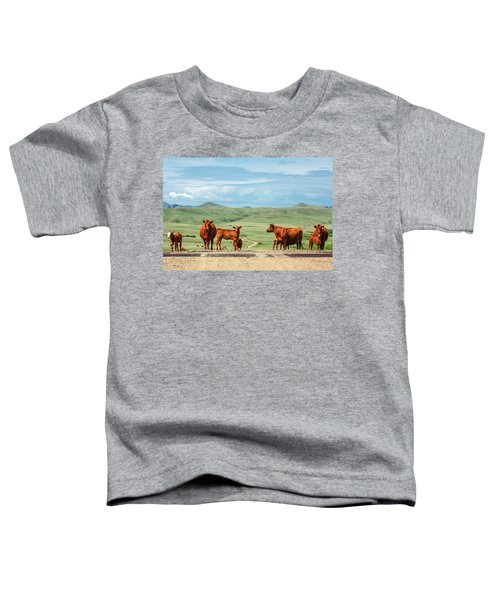 Cattle Guards Toddler T-Shirt