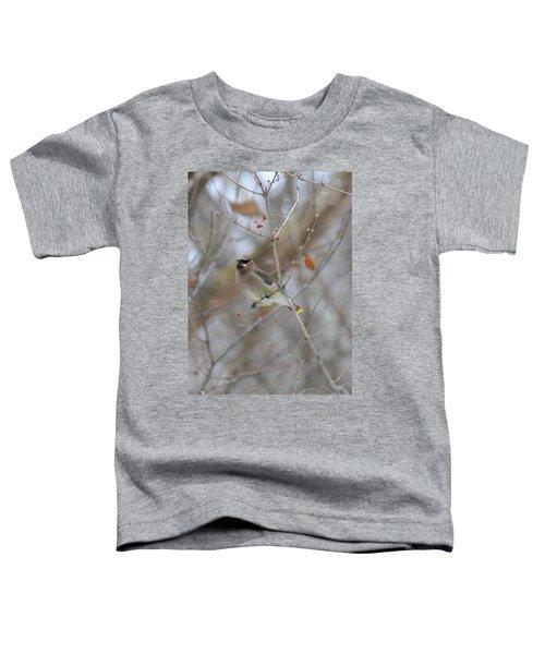 Cedar Wax Wing 2 Toddler T-Shirt by David Arment