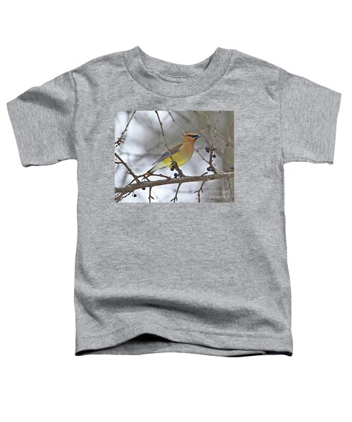 Cedar Wax Wing-2 Toddler T-Shirt