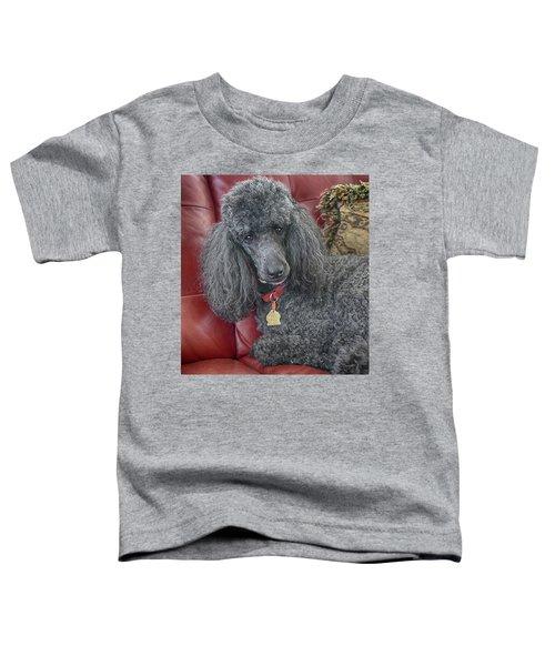 Cedric Toddler T-Shirt