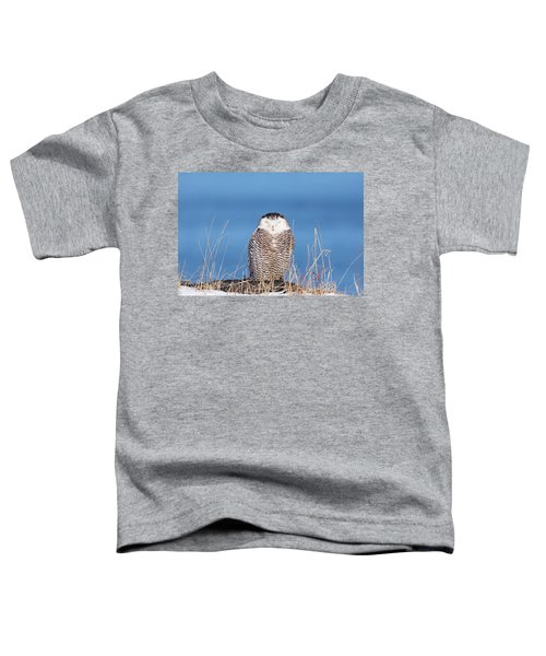 Centered Snowy Owl Toddler T-Shirt