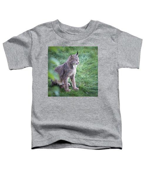 Champion Mama Lynx Toddler T-Shirt