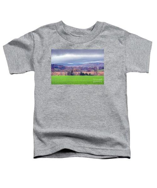 Changing Seasons Toddler T-Shirt