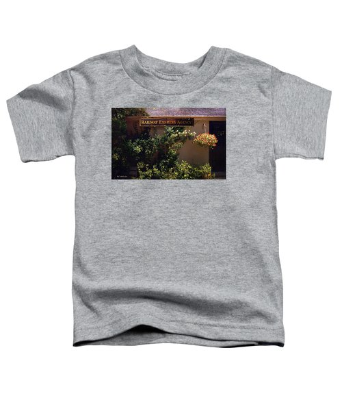 Charming Whimsy Toddler T-Shirt