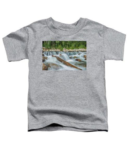 Chasm Falls Toddler T-Shirt