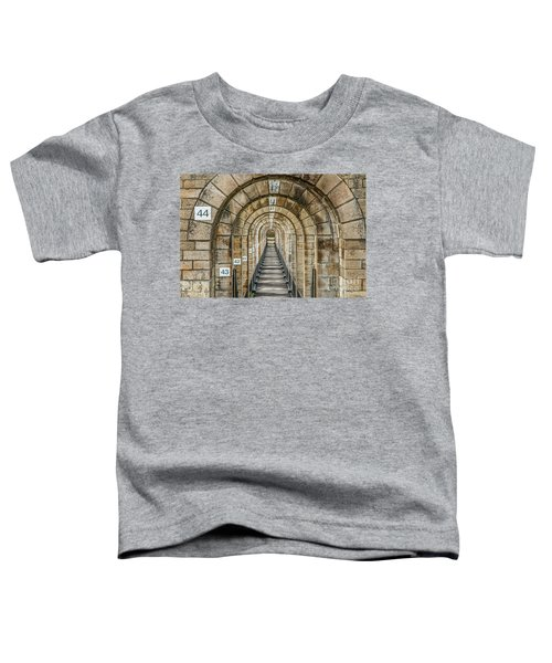 Chaumont Viaduct France Toddler T-Shirt