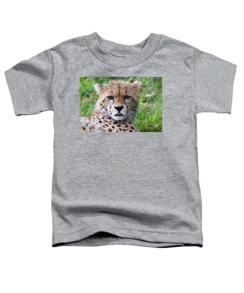 Toddler T-Shirt featuring the photograph Cheetah by MGL Meiklejohn Graphics Licensing
