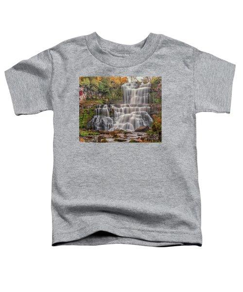 Chittenango Falls Toddler T-Shirt