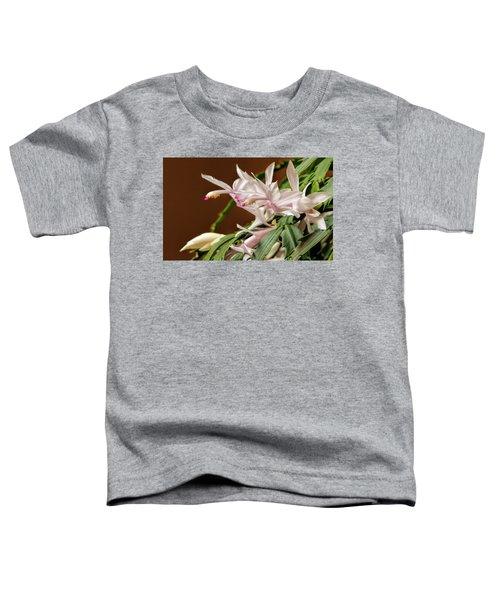 Christmas Cactus Toddler T-Shirt