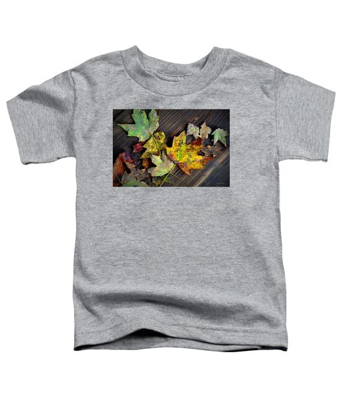 Chromatic Finale Toddler T-Shirt