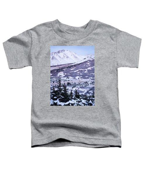 Chugach In Alpenglow Toddler T-Shirt