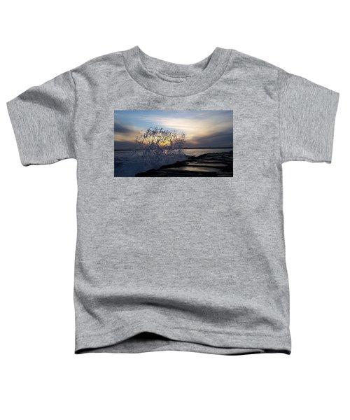 Circling Sunset Toddler T-Shirt