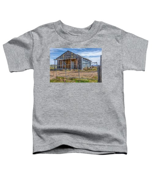 Cisco Landing Store Toddler T-Shirt