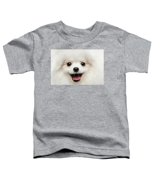 Closeup Furry Happiness White Pomeranian Spitz Dog Curious Smiling Toddler T-Shirt
