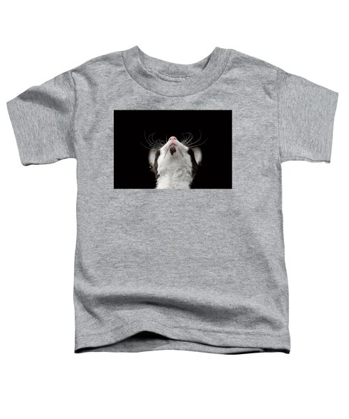 Closeup Portrait Of Cornish Rex Looking Up Isolated On Black  Toddler T-Shirt