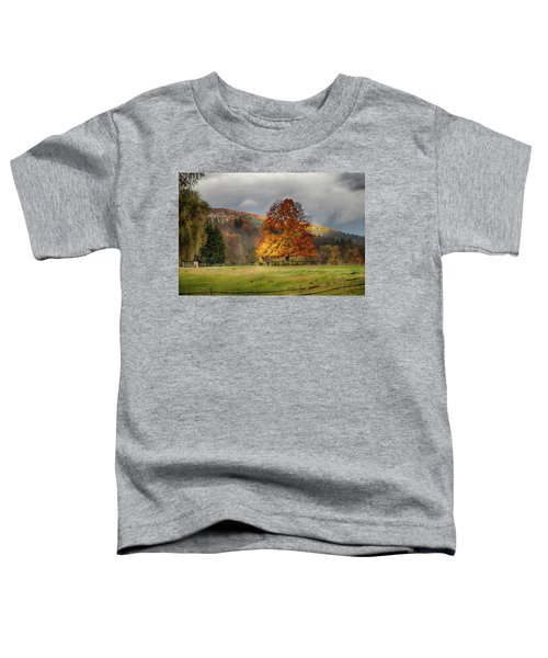 Clouds Part Over Marsh Billings-rockefeller Nhp Toddler T-Shirt