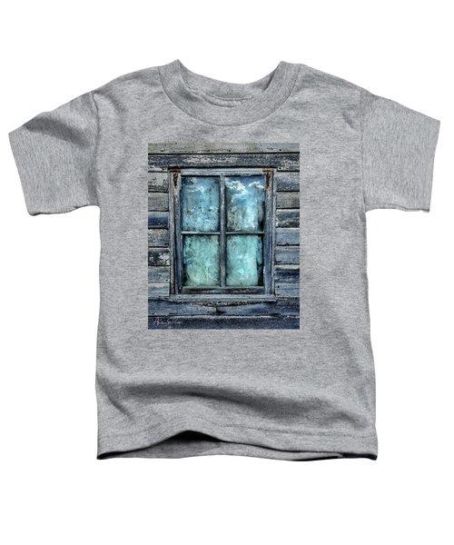 Cloudy Window Toddler T-Shirt