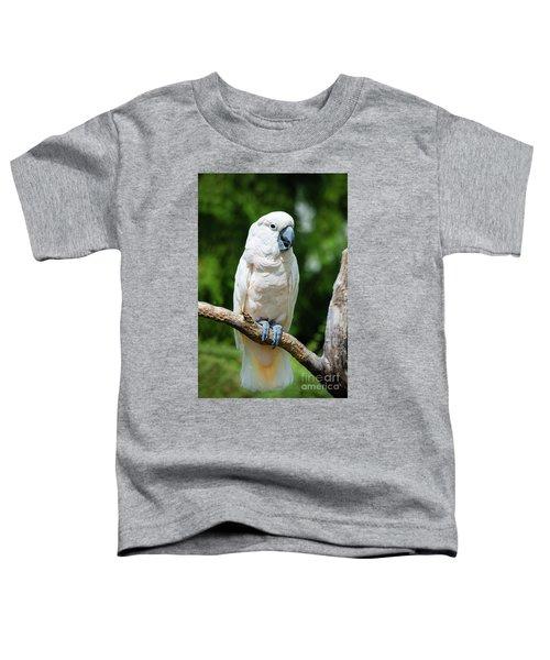 Cockatoo Toddler T-Shirt