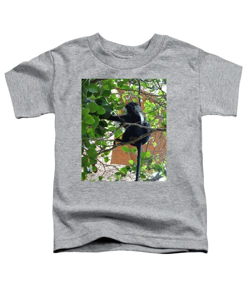 Colobus Monkey Eating Leaves In A Tree - Full Body Toddler T-Shirt