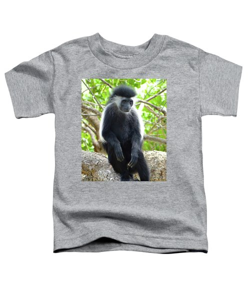 Colobus Monkey Sitting In A Tree 2 Toddler T-Shirt