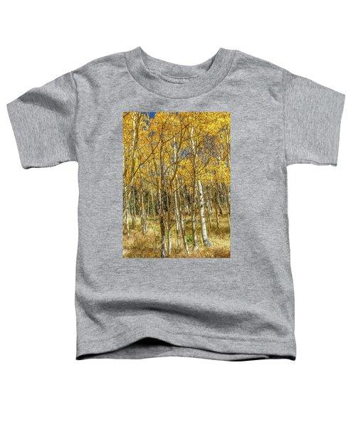 Colorado Gold Toddler T-Shirt