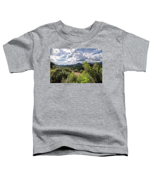 Colorado Summer Toddler T-Shirt