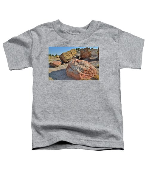 Colorful Boulders In The Bentonite Site On Little Park Road Toddler T-Shirt