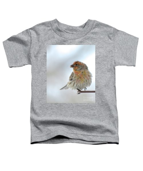 Colorful Finch Eating Breakfast Toddler T-Shirt