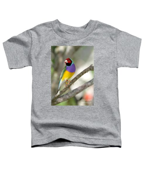 Colorful Gouldian Finch Toddler T-Shirt
