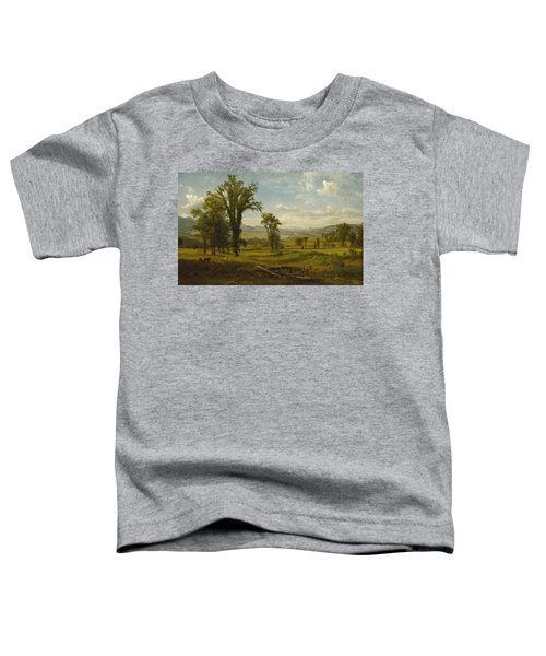 Connecticut River Valley, Claremont, New Hampshire Toddler T-Shirt