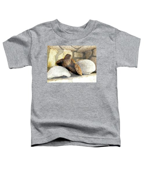 Toddler T-Shirt featuring the photograph Coral And Turtle Decor by Francesca Mackenney