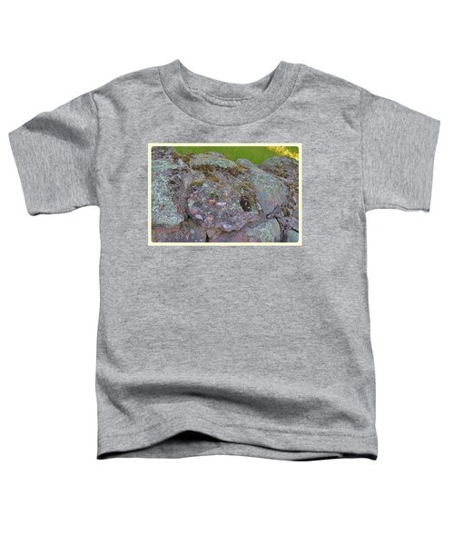 Corruption On The Cairns Toddler T-Shirt