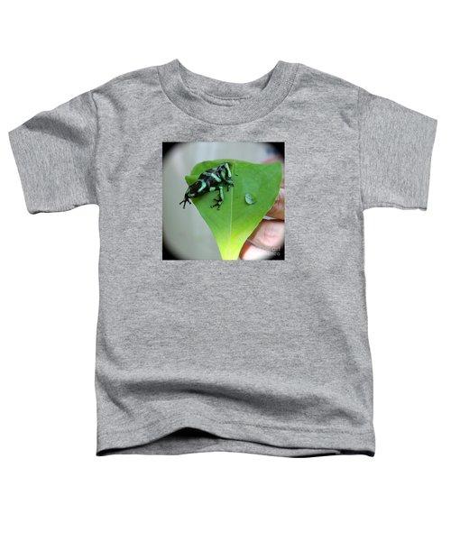 Costa Rican Poison Dart Frog Toddler T-Shirt