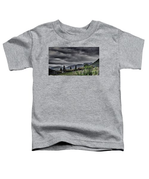 Cottages Toddler T-Shirt