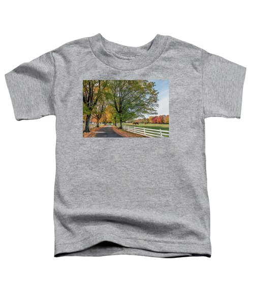 Country Road In Rural Maryland During Autumn Toddler T-Shirt