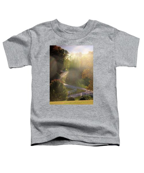 Country Road In Rural Virginia, With Trees Changing Colors In Autumn Toddler T-Shirt