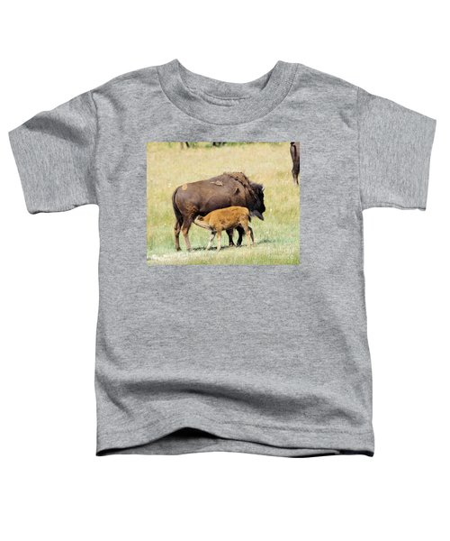 Cow Bison And Her Calf Toddler T-Shirt