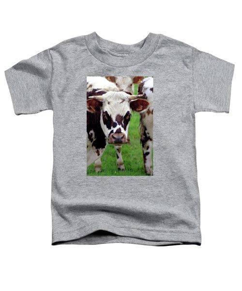 Cow Closeup Toddler T-Shirt