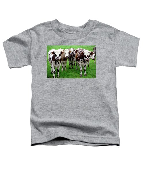 Cow Group Toddler T-Shirt