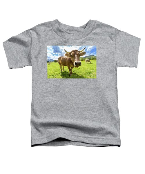 Toddler T-Shirt featuring the photograph Cow In Meadow by MGL Meiklejohn Graphics Licensing