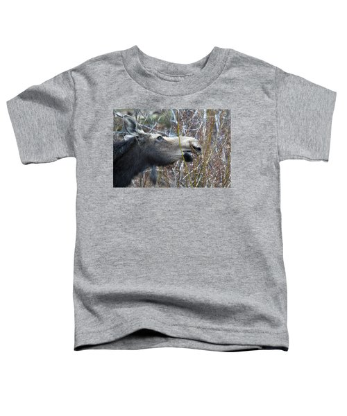 Cow Moose Dining On Willow Toddler T-Shirt