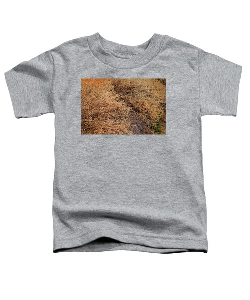 Coyote Brush Toddler T-Shirt
