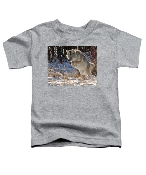 Coyote In Mid Jump Toddler T-Shirt
