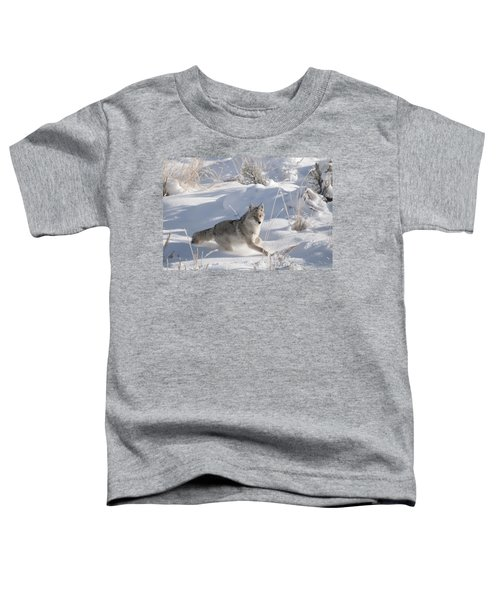 Coyote On The Move Toddler T-Shirt