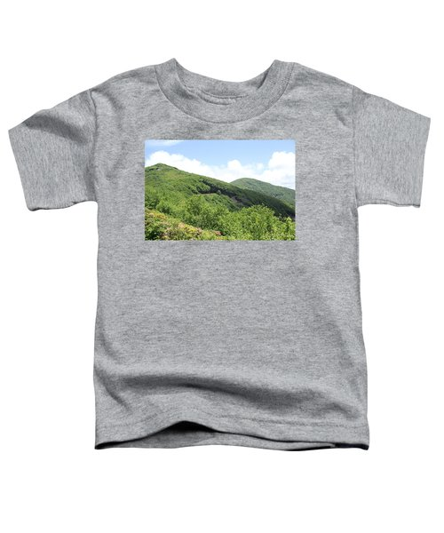 Craggy Gardens Toddler T-Shirt