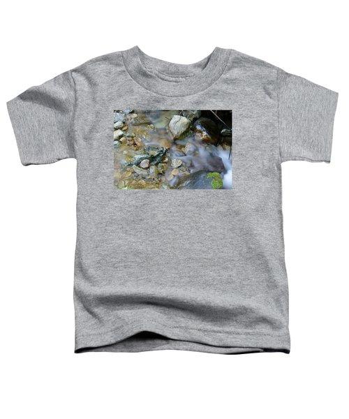 Creek On Mt Tamalpais Toddler T-Shirt
