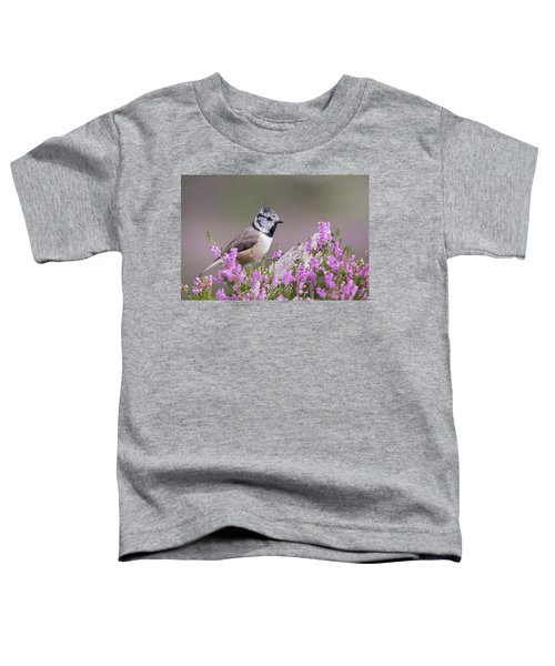 Crested Tit In Heather Toddler T-Shirt
